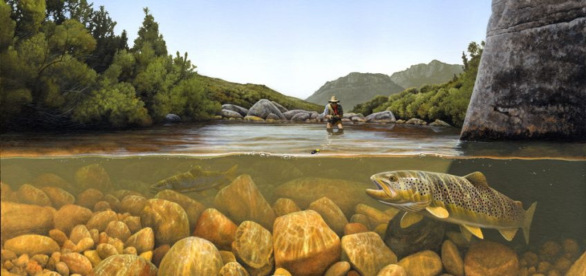 Before: Craig Smith's painting of Tom Lewin fishing his favourite stretch of Witte River, Paradise Valley(above) before the totality of the river flow upstream of this point was diverted by the Bovlei farmers.  After: Dean Riphagen's photographs (above) taken in October 2014 showing the Paradise Valley pool. The water temperature had been substantially raised because of the restricted flow. The historic water line can be seen on the big rock to the right of the photograph. Before the flow was taken away the small rock in the middle of the photograph was submerged